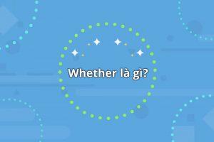 Whether là gì? Tổng quan về cấu trúc whether